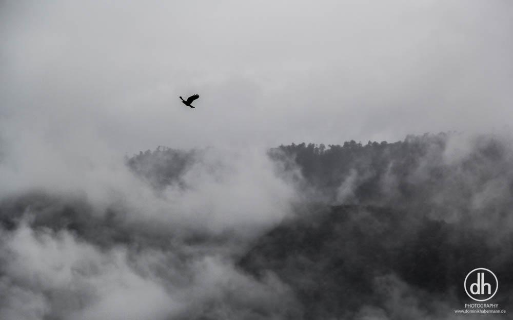 wolkenverhangener Nachmittag