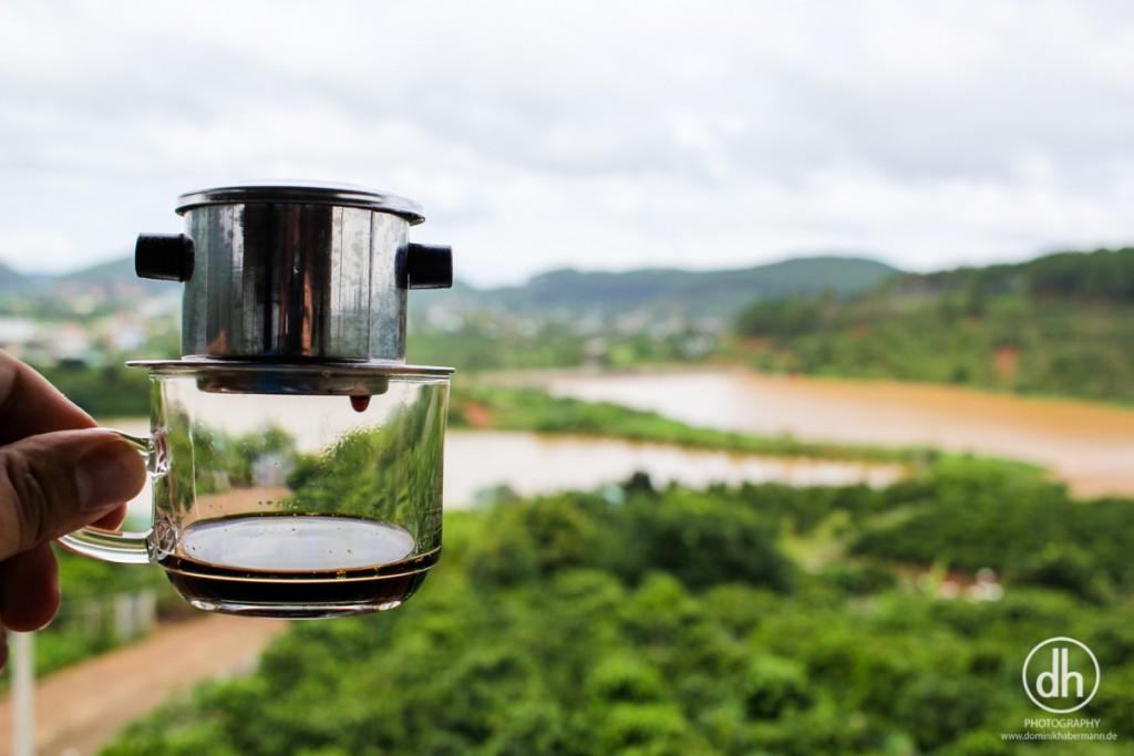 Easy Rider Tour - Kaffeeplantage