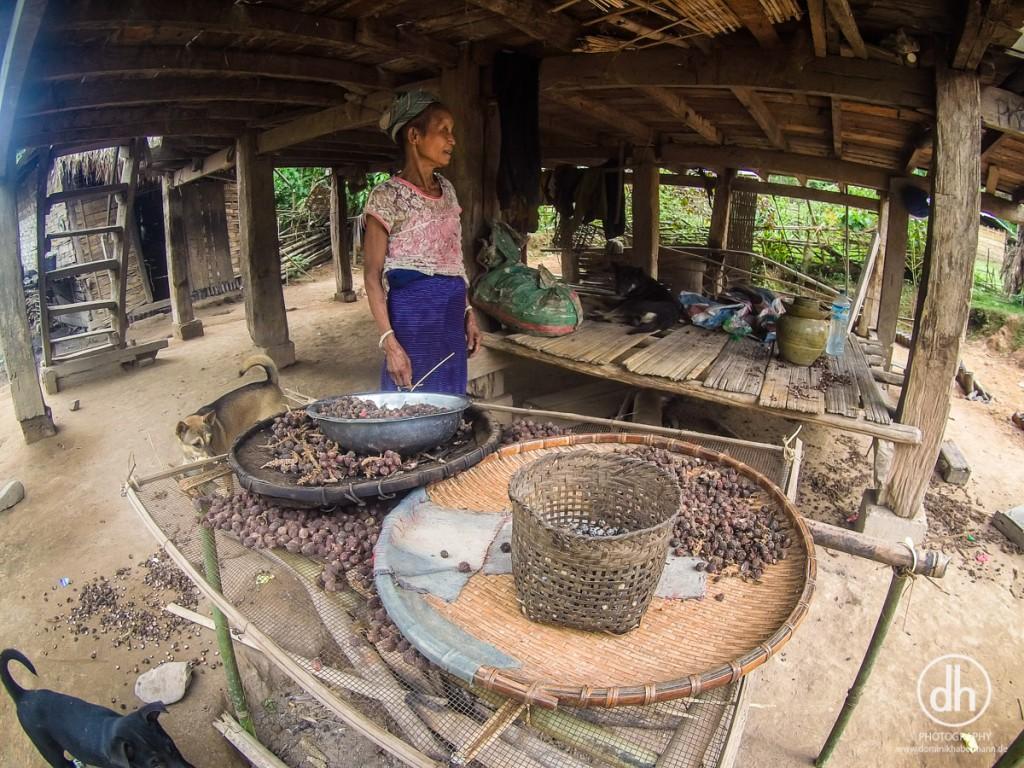 Luang Namtha - Hmong Tribe