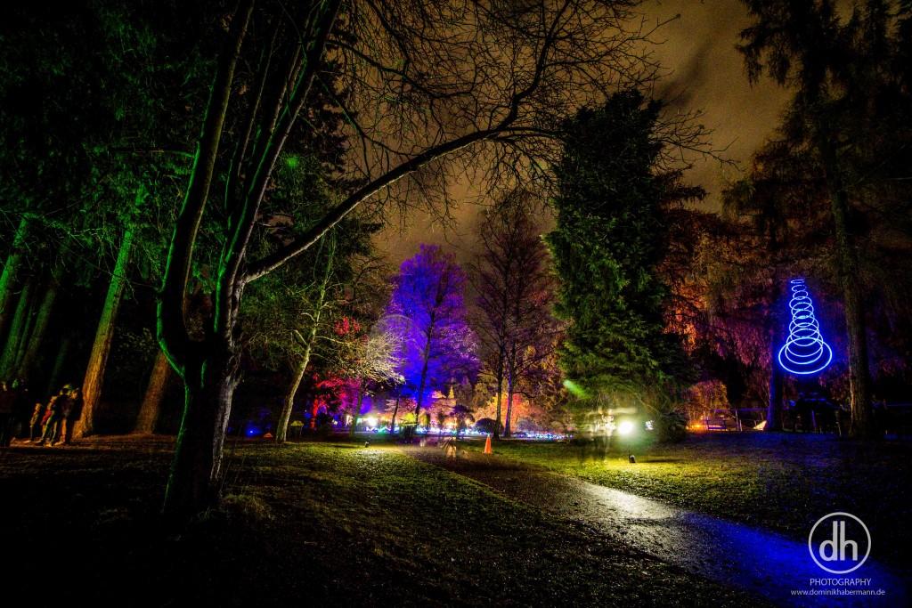 Queenstown - LUMA festival